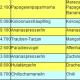 Neue Levelliste für Bahamarama