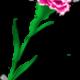 Item Rübezahl und der Nelken Sticker