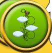 wunderanke-button-quest