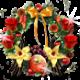 Neue Floristen Bilder