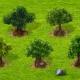 Bäume aufpoliert