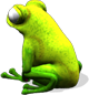 frosch-seite