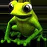 frosch-vorne